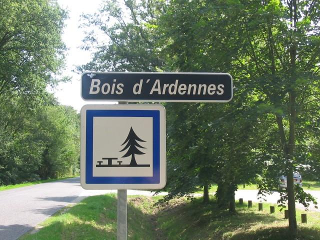ducey-bois-d-ardennes-164
